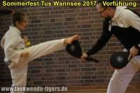 taekwondo-tus-wannsee-sommerfest-reinickendorf-wedding-berlin-45