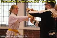 taekwondo-tus-wannsee-sommerfest-reinickendorf-wedding-berlin-49