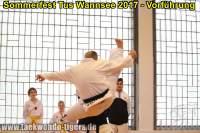 taekwondo-tus-wannsee-sommerfest-reinickendorf-wedding-berlin-52