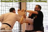 taekwondo-tus-wannsee-sommerfest-reinickendorf-wedding-berlin-53