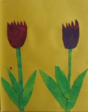 Tulpen_9
