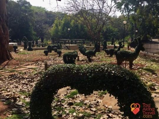 Bangalore Running & Walking Tours-Topiary