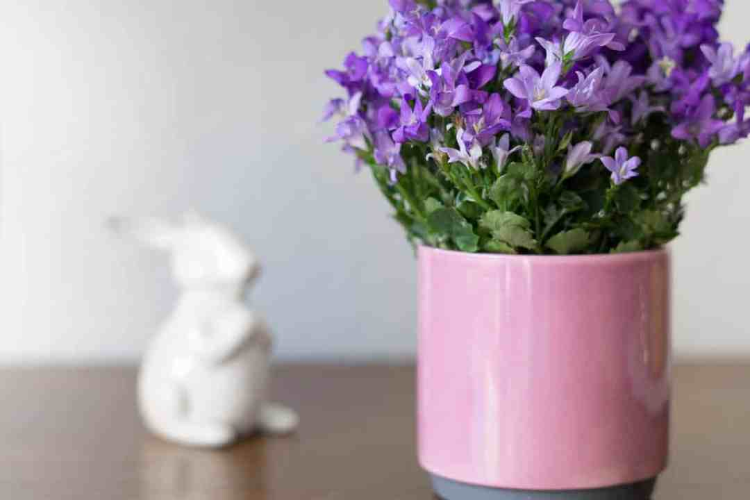 Blumen und Osterhase