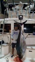 235lb-tuna