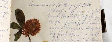 18_DTA-Signatur 1256, II