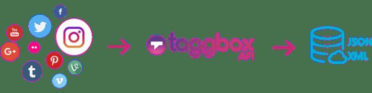 Social Media Aggregator API