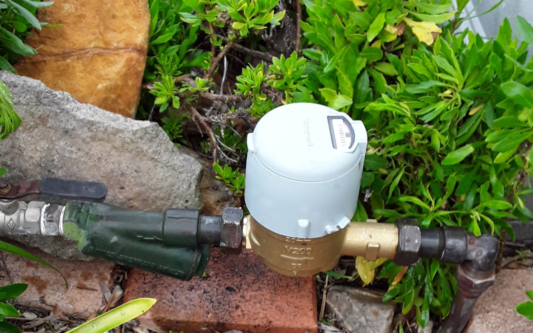 Leeton smart water meters already detecting water leaks