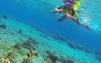 Tagulandang Island (North Sulawesi). Snorkeling in Batu Ampat, Bahoi.