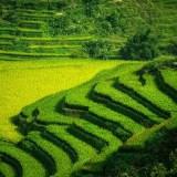 Tahir Özgür Vietnam-Cambodia-101