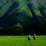 Tahir Özgür Vietnam-Cambodia-135