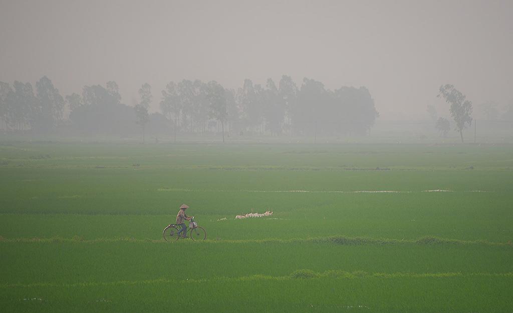 THO_2985işlenmiş bisiklet siss