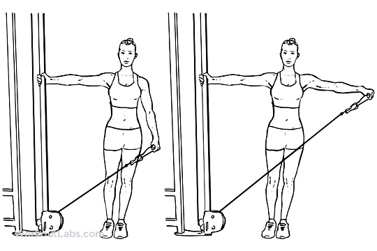 inside the gym  single arm cable lateral    side raise