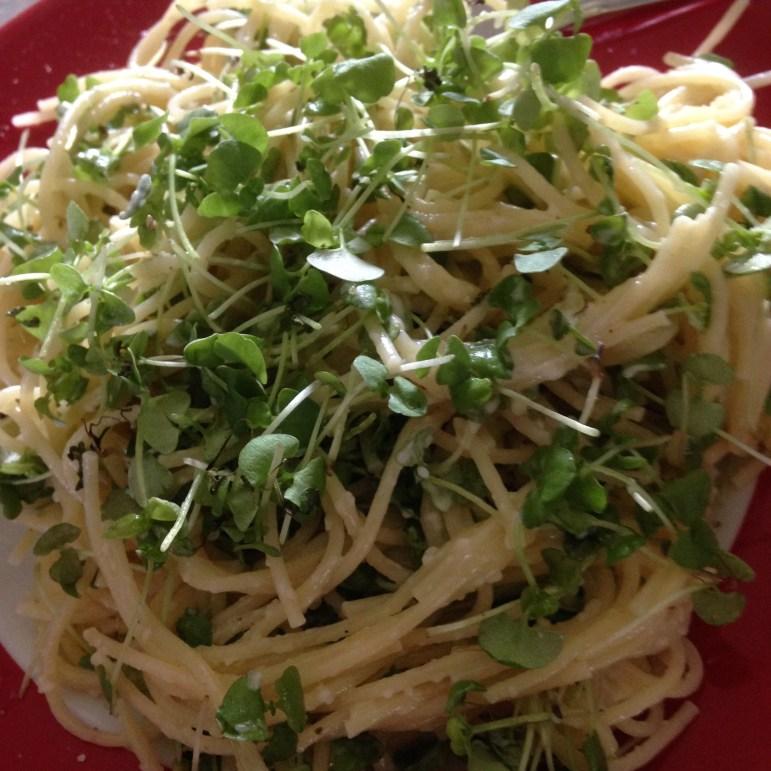 Pasta with Basil Microgreens