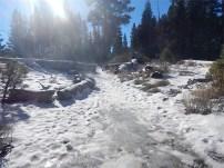 Icy beginning
