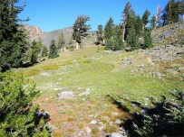 Trail up to Dick's Pass