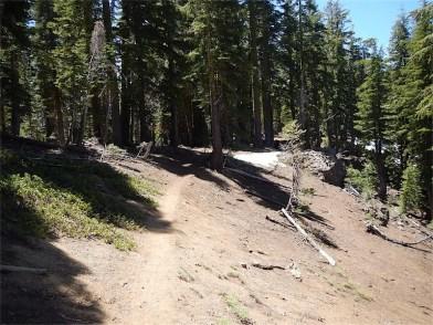 Nearly at ridge line