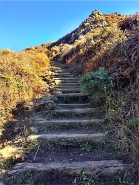 Stairs to Pirates Cove