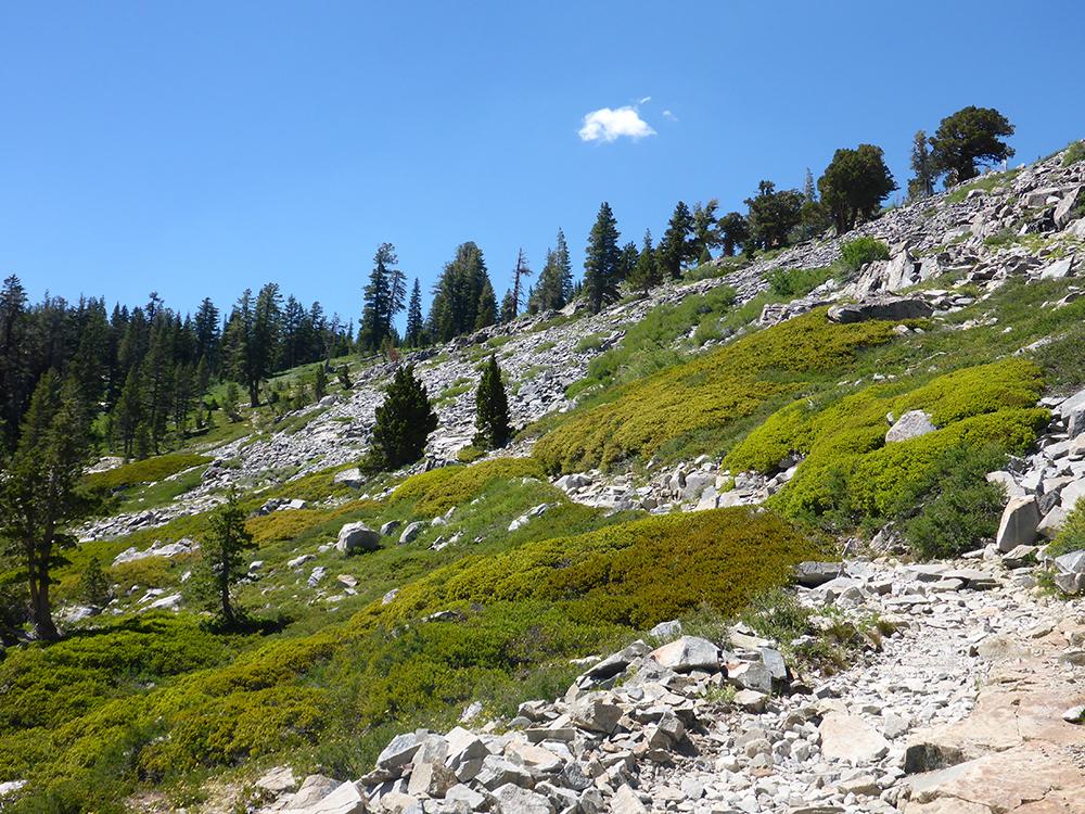 5-The Tahoe Rim Trail in Desolation Wilderness