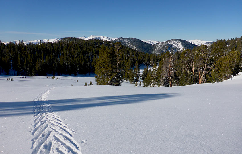 Considerations for Winter Adventure in Lake Tahoe's Backcountry