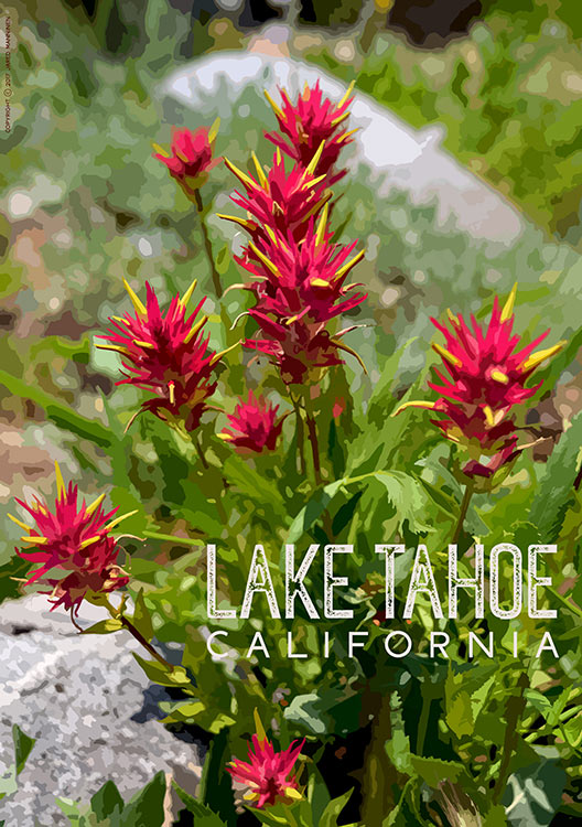 Paintbrush at Lake Tahoe, CA (poster)