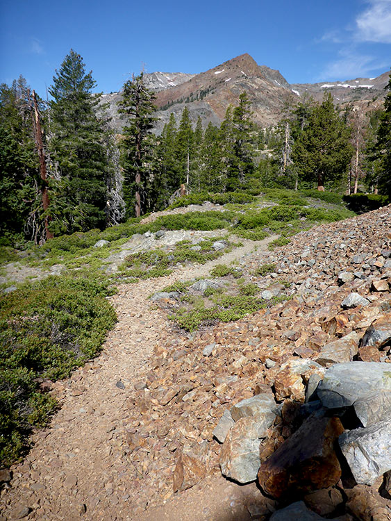 9 - The Long Approach to Dick's Pass