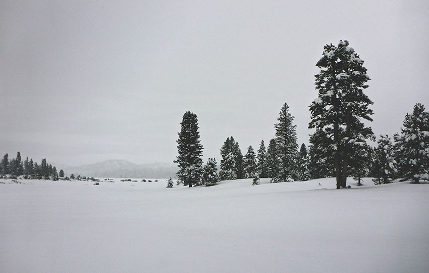Cross-Country Skiing in Hope Valley (via Hope Valley Sno-Park)