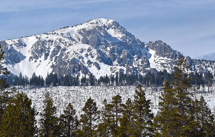 Cross-Country Skiing at Washoe Meadows State Park