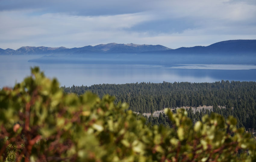 Steam rising off of Lake Tahoe with shrubs in the foreground and mountain range in the distance
