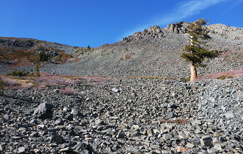 Hiking the trail to Mount Tallac through a talus field