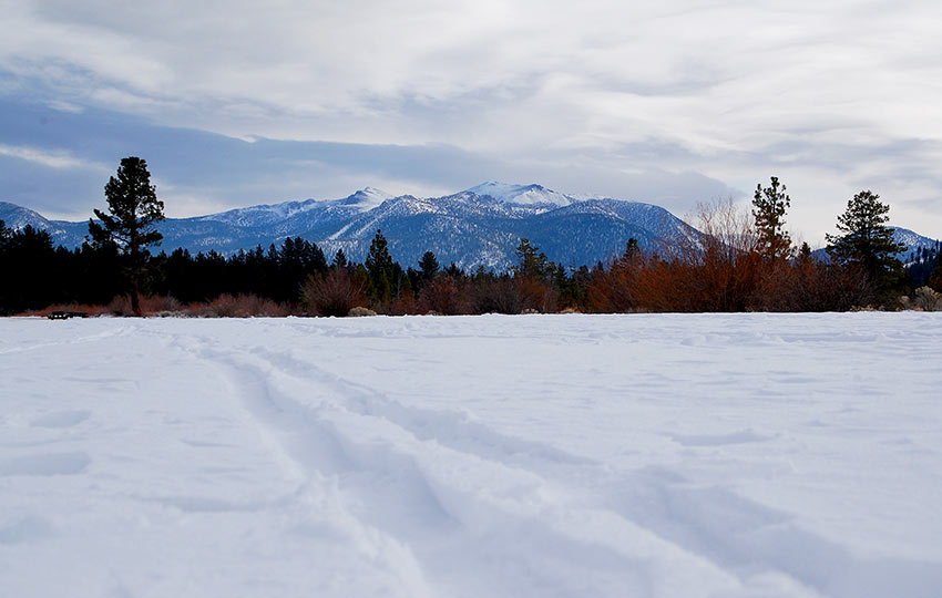 Cross-country ski tracks in the snow with snow-covered mountains in the background