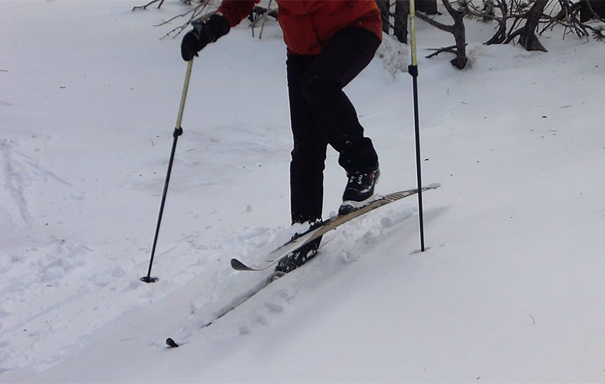 Cross-country skier using the side-step technique up a hill