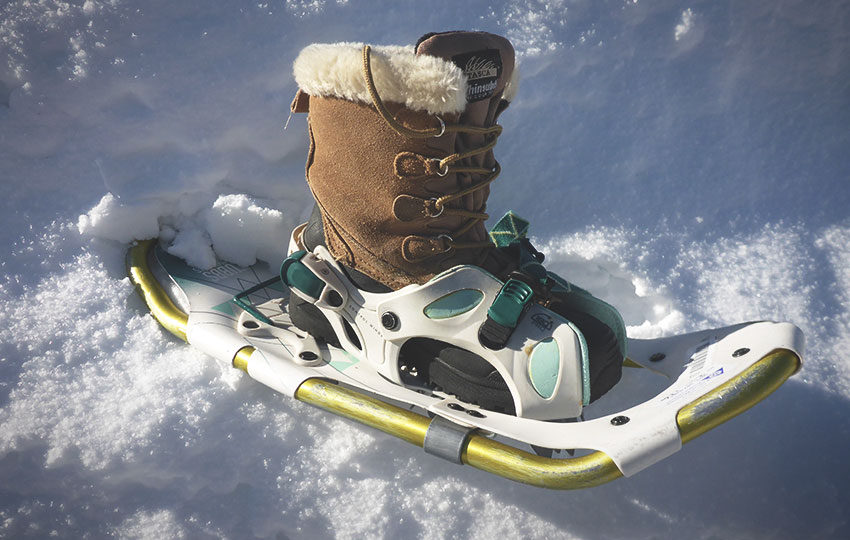 Winter boot in a snowshoe