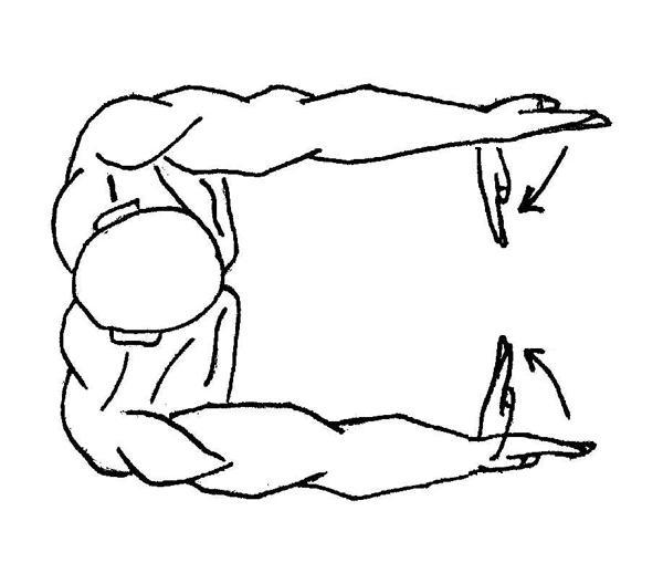 Qigong Exercises, Qigong Meditation, Qigong and Shiatsu