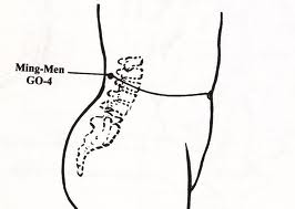 Ming-Men: An acupressure point with power-full