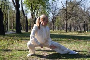 Tai Chi Chuan u Beogradu, duh i telo