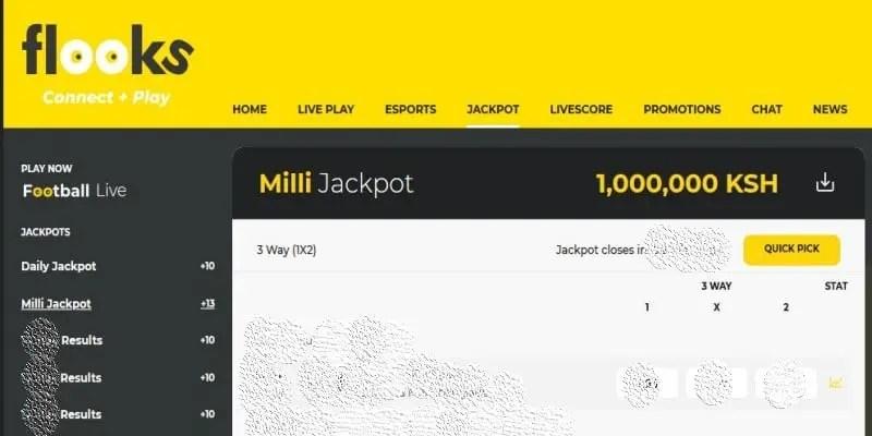 Flooks Daily Milli Jackpot Predictions