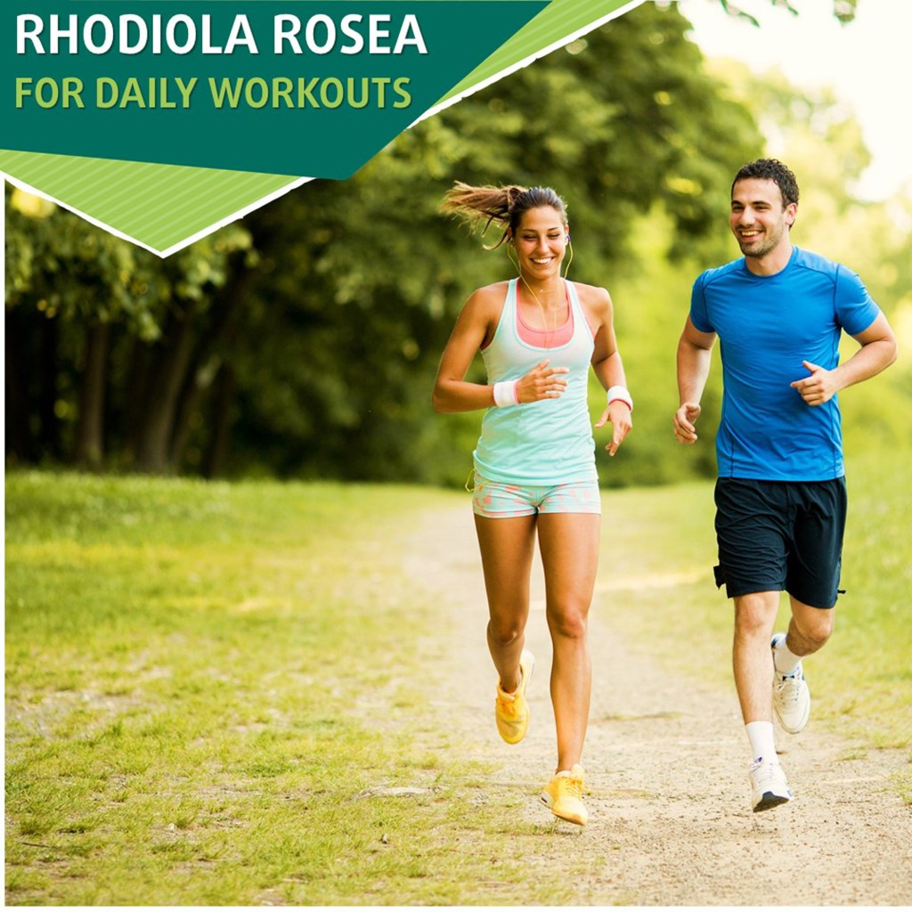 Rhodiola rosea workout