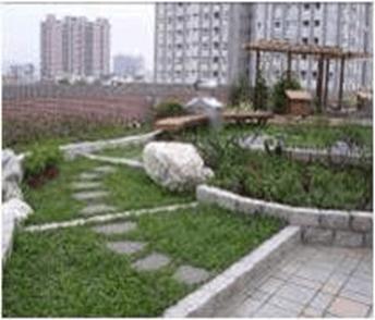 屋頂節能綠化