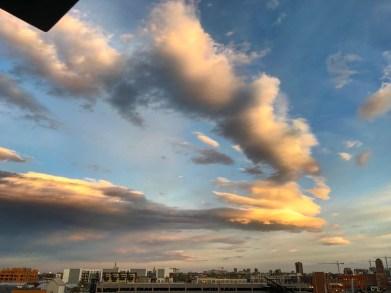 Denver365_2017 - 107
