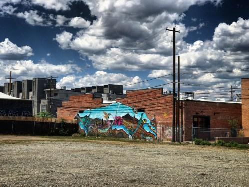 Denver365_2017 - 231
