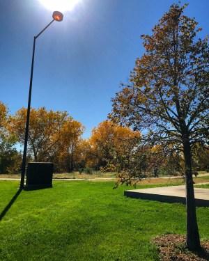 Denver365_2017 - 290