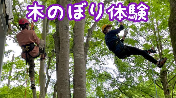 木のぼり体験