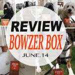 #REVIEW @bowzerbox June! Making Wagging Tails all over Canada!