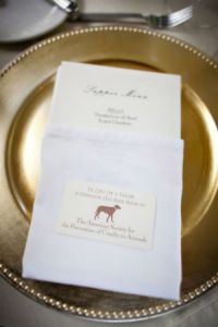 dogs-in-weddings-donation-to-rescue-group.jpg