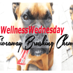 #WellnessWednesday  @MilkBoneCanada Taste Like a Treat, Cleans Like a Toothbrush #BrushingChews