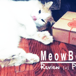 {Review} MeowBox the Original Monthly Subscription for Cats {+} Promo Code #MeowMonday