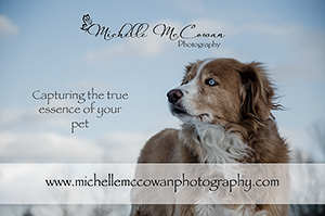 Michelle McCowan Photography