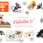 Valentine's Gift Guide for The Dog Lover