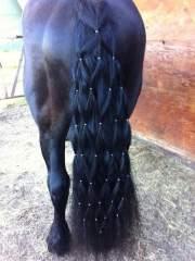 amazing horse tail braids ideas