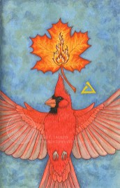 """Cardinal's Flame: 5.25"""" x 8.5"""", watercolor and acrylic gouache on paper."""